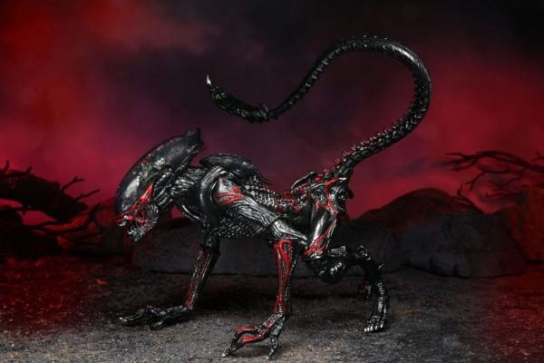 Aliens Actionfigur Night Cougar Alien (Kenner Tribute)
