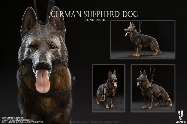 VERYCOOL Actionfigur 1/6 German Shepherd Dog